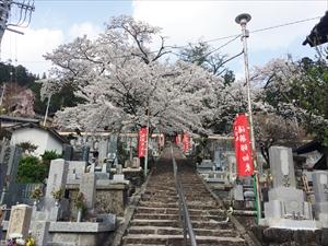 onsenji_R