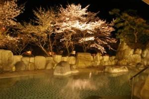下呂温泉望川館夜桜露天風呂