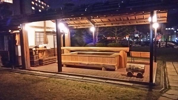 望川館 夜桜-0202